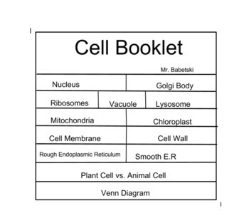 Cell Organelle Foldable -- Information Organizer Booklet