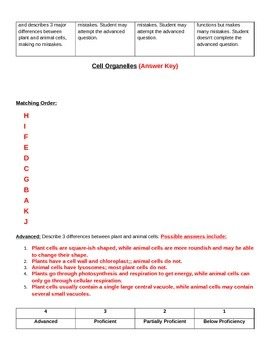Cell Organelle Functions Quiz