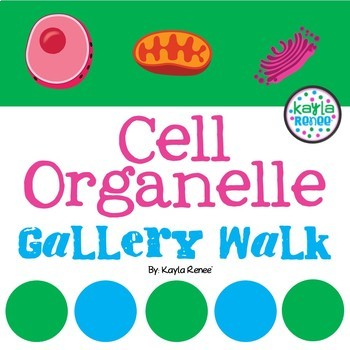 Cell Organelle Gallery Walk