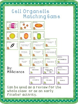 Cell Organelle Matching Game