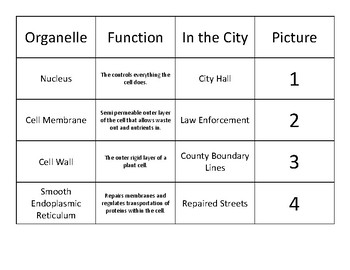 cell city answer key diagram cell city analogy worksheets   teaching resources tpt  cell city analogy worksheets   teaching