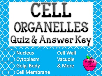 Cell Organelle Quiz with Word Bank & Answer Key