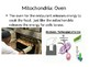 Cell Organelle Restaurant Comparison Power Points