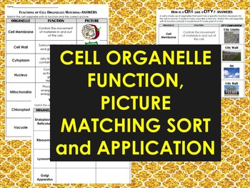 Cell Organelle Sort Cut & Paste w/ Cell City Application S