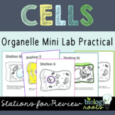 Cell Organelle Stations- supports distance learning