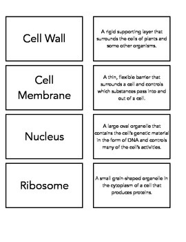 Cell Organelle Vocab Match Up