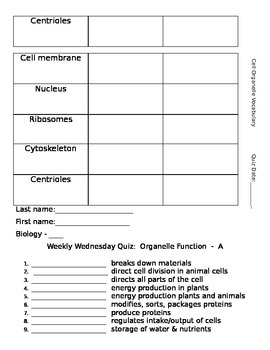 Cell Organelle Vocabulary and Quiz