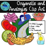 BIOLOGY CLIP ART: Cell Organelle and Analogies great for Review & Matching Games
