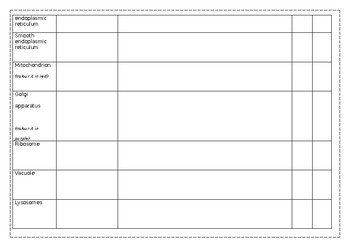 Cell Organelle worksheet