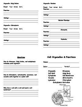 Cell Organelles Booklet