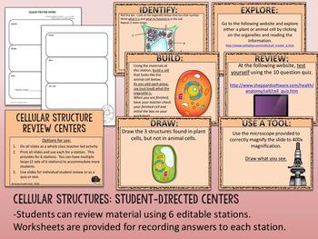 Cells & Organelles Bundle: PowerPoint, Lab, Homework, Activities, & Quiz