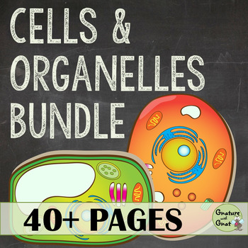 Cells & Organelles Bundle: PowerPoint, Lab, Homework, Acti