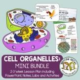 Cell Organelles Structure & Function - PowerPoint & Handouts Bundle