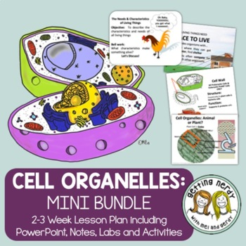 Cell Organelles Structure & Function - PowerPoint & Handouts Bundle