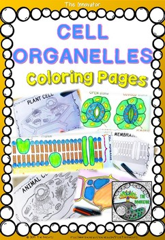 Cell Organelles Coloring Page