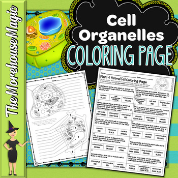 Plant & Animal Cell Organelles Science Color By Number or Quiz