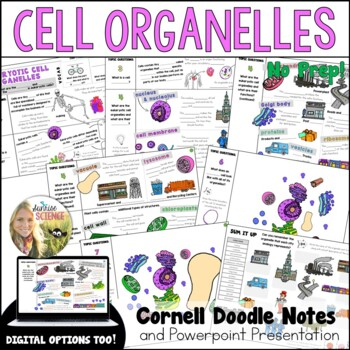 Cell Organelles Cornell Doodle Notes : Cell City Analogy with PowerPoint