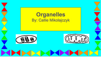 Cell Organelles Cut outs for graphic organizer