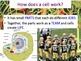 Cell Organelles & Edible Cell-O Lab Experiment - Lesson Presentations, more