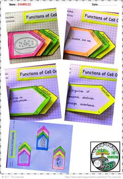 Cell Organelles FUNCTIONS - Interactive Notes