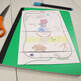 Cell Organelles Foldables: Exploring Plant & Animal Cell Structure & Function