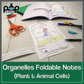 Cell organelles foldables exploring plant animal cell structure cell organelles foldables exploring plant animal cell structure function ccuart Image collections
