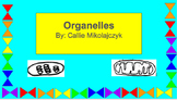 Cell Organelles Graphic Organizer
