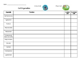 Cell Organelles Graphic Organizer w/ Key