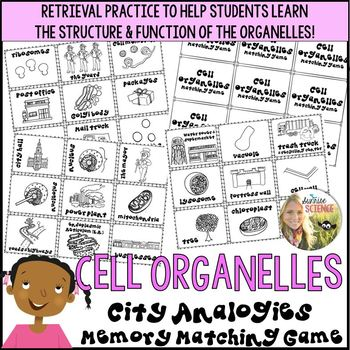 cell organelles memory matching game city analogy. Black Bedroom Furniture Sets. Home Design Ideas
