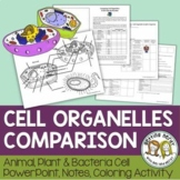 Plant, Animal, & Bacteria Cells Comparison - Organelle Structure & Function