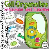 Cell Organelles Structure and Function Interactive Notebook Activity FREEBIE