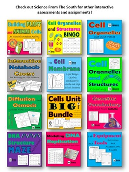 Cell Organelle Structures and Functions Activities and Assessments Bundle