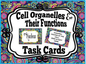 Cell Organelles & Their Functions + Freebie