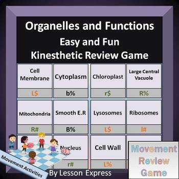 Cell Organelles -- Vocabulary Kinesthetic Review Game