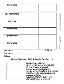 Cell Organelles Vocabulary Terms and Quiz