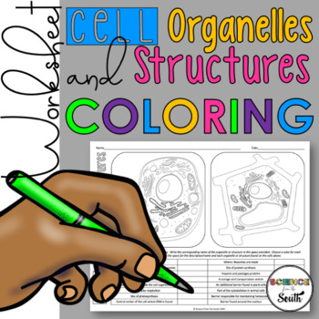 Cell Organelles and Structures Coloring for Your Middle and High School Students