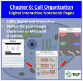 Cell Organization - Digital Interactive Notebook Pages