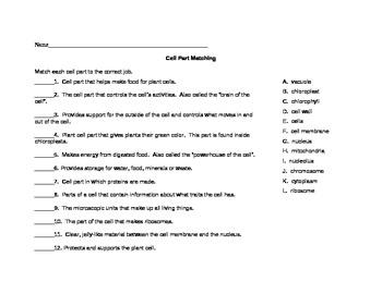 Cell Part Matching Worksheet