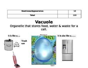 Cell Part Poster Analogy Project
