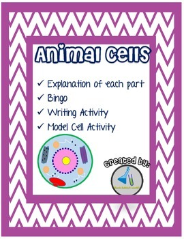 Cell Parts Explained Plus Bingo Boards and other Activities