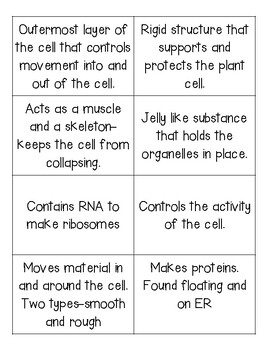 Cell Parts Flash Cards