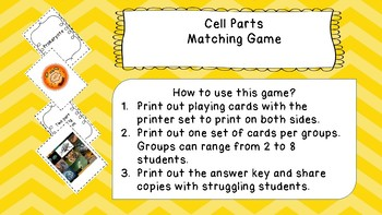 Cell Parts Matching Cards