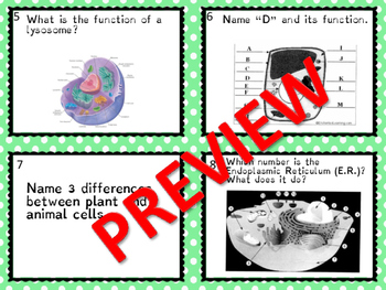 Cell Parts Organelles & Cell Theory Review Game with Scien