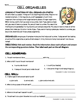 Cell Parts Organelles decriptions  w/ questions and Cell City Project bundle