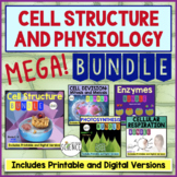 Cell Physiology MegaBundle: Cells, Mitosis, Enzymes, Photosynthesis, Respiration