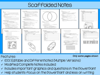 Cells PowerPoint, Notes & Exam (Differentiated and Editable)
