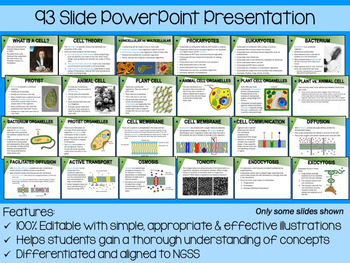Cells PowerPoint, Notes & Exam