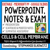 Cells & Cell Membrane PowerPoint, Notes & Exam