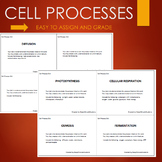 Cell Processes Activity