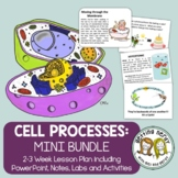 Cell Processes - PowerPoint & Handouts Bundle